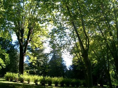 Parc-Pomme-III-OLORON-SAINTE-MARIE-OTHB-DI
