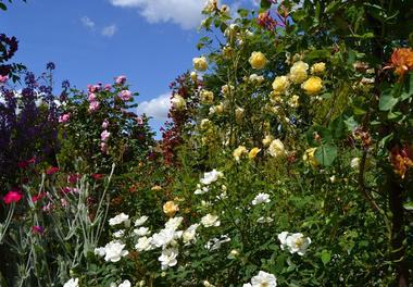 Le Jardin des Poètes & des Anges 1440x900