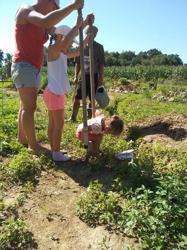 Visite et cueillette aux champs