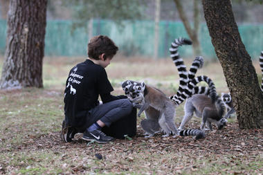 Zoo-labenne-OTI LAS