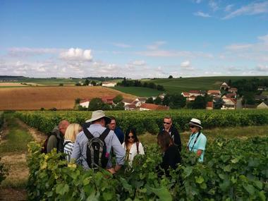 Les sensations vigneronnes - Epernay