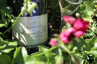 Bouteille Champagne Bricquet et Fils
