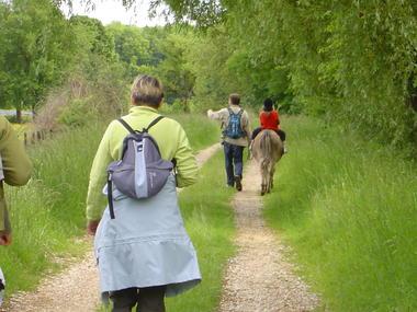Au Milieu de Nulle Part - Randonnée guidée avec un âne