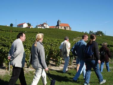 Le sentier du Vigneron - Mutigny