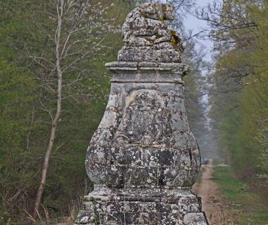 Pyramide - La Forestière