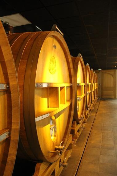 champagne de Telmont - Damery (9)