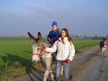 Promenade en selle sur un âne tenu en main