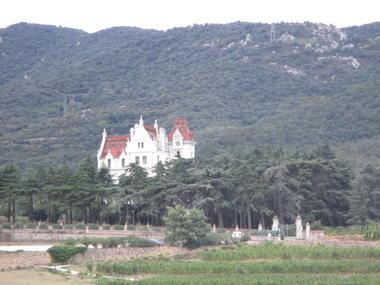 DEGLAR0660000096 vignes chateau