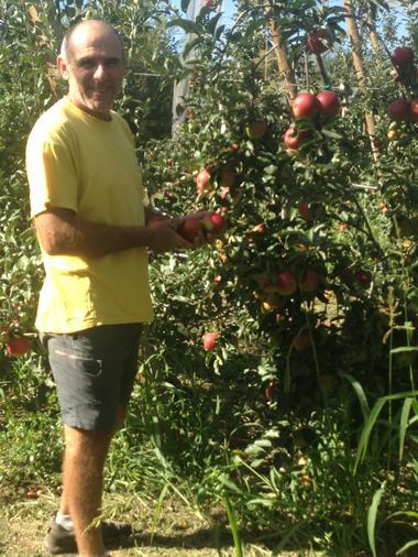 Le producteur et ses pommes