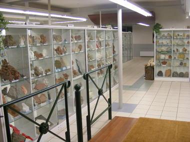 Musée Géologique