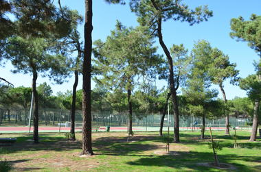 forest_pins_tennis_argeles_2015_6