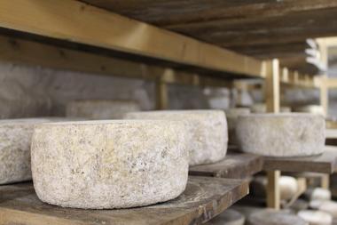 fromage de chèvre conflent canigo aytua