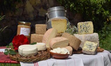 Plateau de produits fromagers