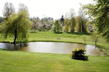 Bacqueville -La Ferme de la Vienne - Jardin -  Mme Ropars