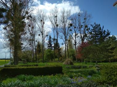Une autre partie du jardin