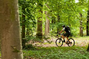 location vélo la Flèche_72_asc (6)