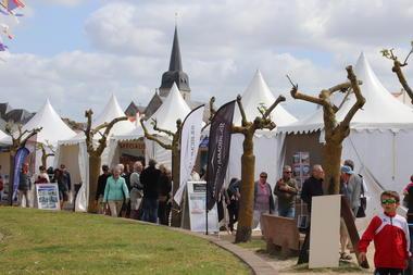 Foire-Expo--Stephane-MICHEL