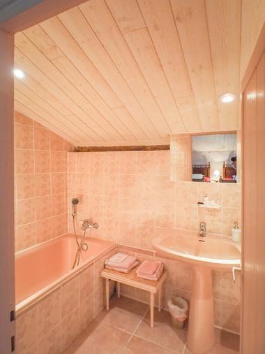 meuble-gite-orangerie-85410-saint-laurent-de-la-salle-10