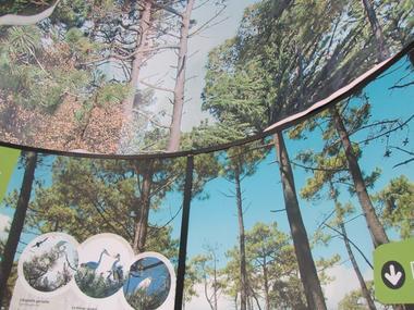 biotopia notre dame de monts parcours espace interactif