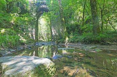contes-légendes-forêt-mervent-85200-1