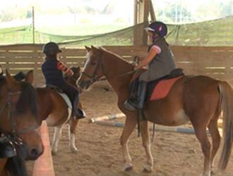 etrier-fontenaisien-centre-equestre-85200-fonenay-le-comte-1