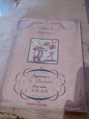 gaec-le-palaineau-le-langon-85370- (10)