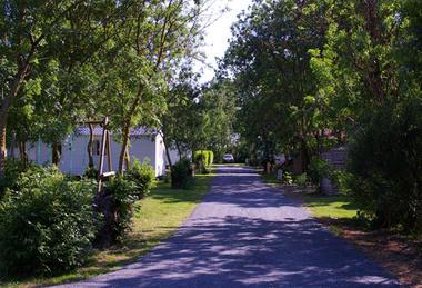 ilot-des-marais-camping-le-langon- (3)