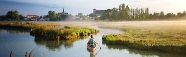 image canoe marais matin