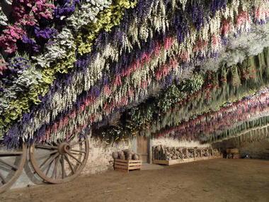Séchoir - Atelier des Fleurs Séchées - Aizenay