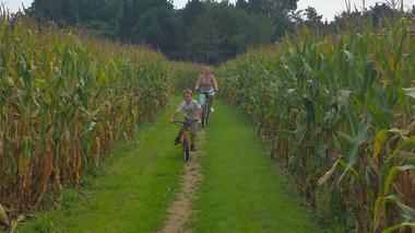 Labyrinthe en délire- Parc de loisirs-Vendée- Vélos