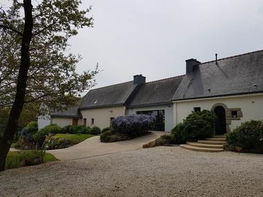 L'arbre voyageur-5-Morbihan-Bretagne-Sud
