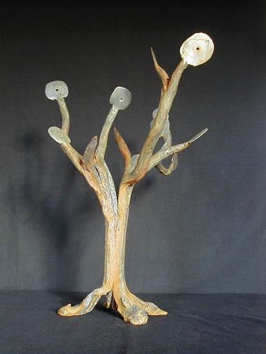 arbre a palabres