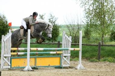 concours d'obstacle