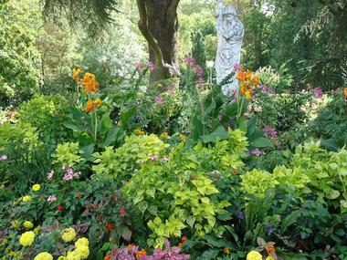 Le Jardin des Plantes visiter montauban découvrir montauban parc  jardin