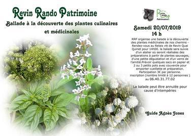 Plantes culinaires et médicinales