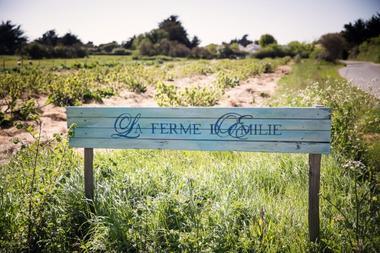 ferme-d-emilie-basse-def-1-sur-88-251190