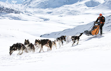 aussois-bapteme-chiens-de-traineau-husky-adventure