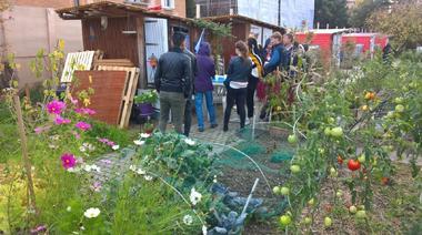 Les jardins et les jardiniers des coeurs d'îlots dans la cité-jardin de Stains