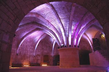 champagne 52 langres patrimoine tour de navarre salle basse 15 angelique roze.
