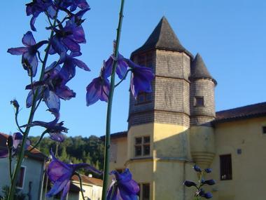 champagne 52 chevillon patrimoine chateau mdt52 01.