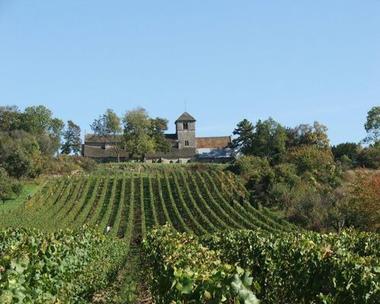 champagne 52 vaux sous aubigny terroir muid montsaugeonnais vignoble mdt52 004.