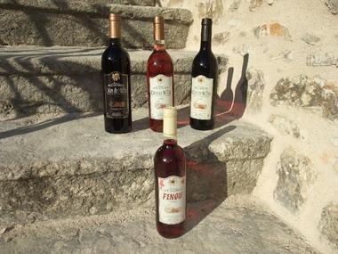 Nos différents vins