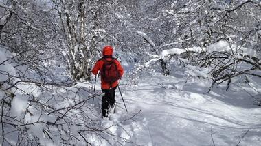 Le Monde à Pied - Randonnée pédestre - Raquettes à neige