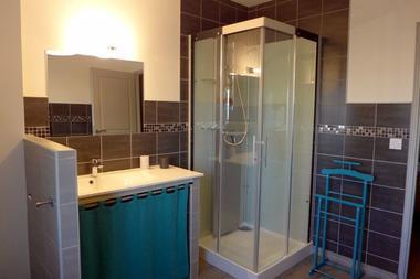 chambre hote haute marne puellemontier 52g594 salle eau 4.
