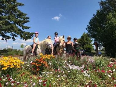champagne haute marne loisirs randonnee centre tourisme equestre lac liez 2.