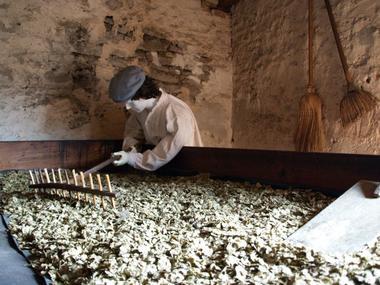 champagne 52 rivieres les fosses decouvertes maison du houblon cones s mulas.