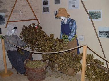 champagne 52 rivieres les fosses decouvertes maison du houblon cueillette mdt52.