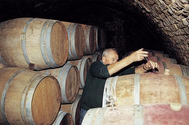 champagne 52 coiffy terroir domaine pelletier cave phl 6181.