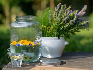 Des heures dehors - balades gourmandises florales - Ploërmel - Brocéliande