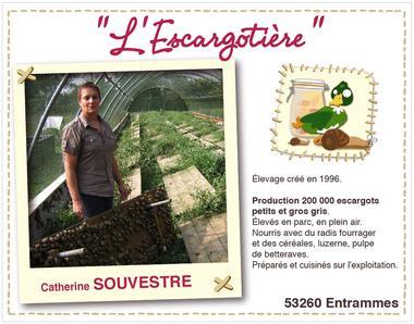 59541_escargotiere